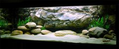 岩石型(大型-空缸)