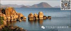 马拉维湖和坦噶尼喀湖的水质及调水